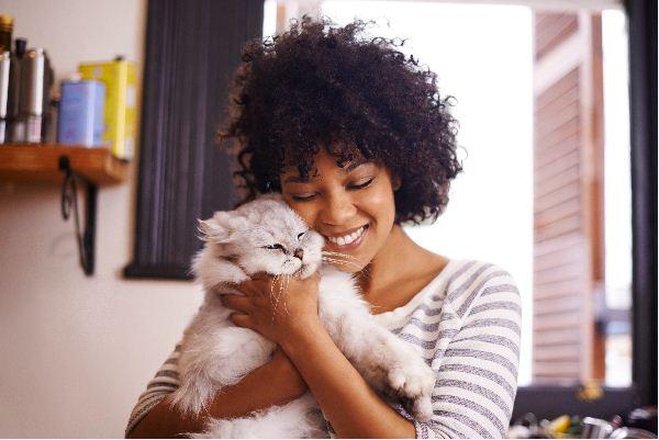 Kuscheltiere - was Sie über ihres Kitts wissen sollten?